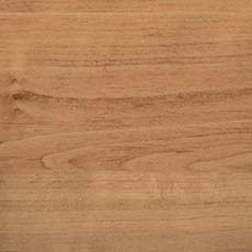 Accoya timber species